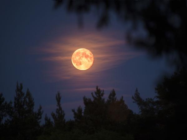Mơ thấy mặt trăng là điềm báo điều gì?