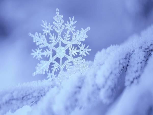 Mơ thấy tuyết đánh lô bao nhiêu? Là lành hay dữ